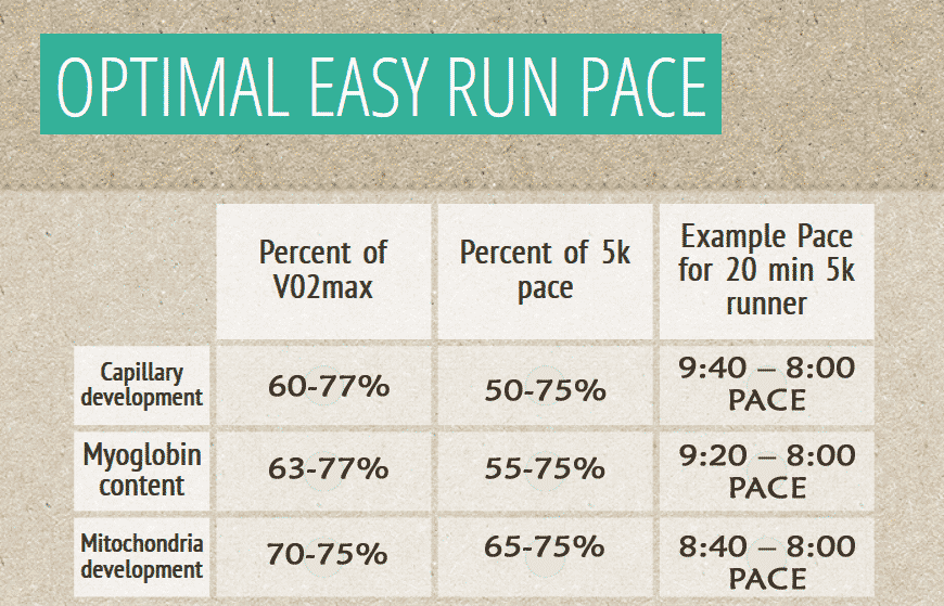 optimal-easy-run-pace