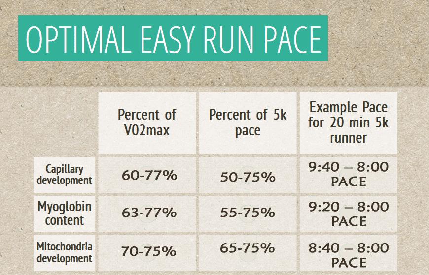 optimal-easy-run-pace